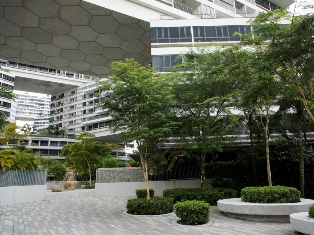 the-interlace 11